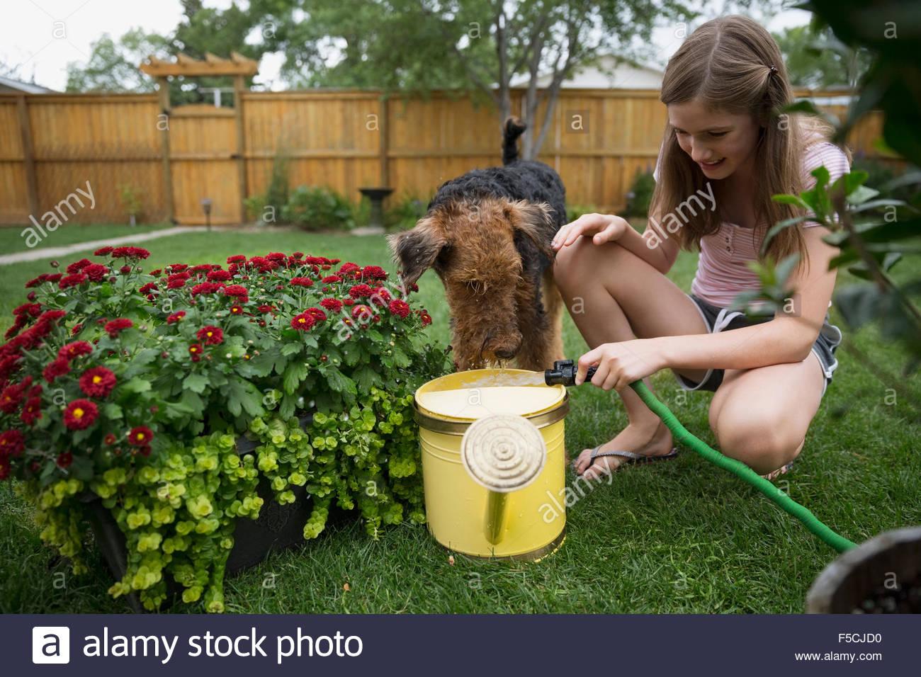 Hund beobachten Mädchen Füllung Gießkanne im Hinterhof Stockbild