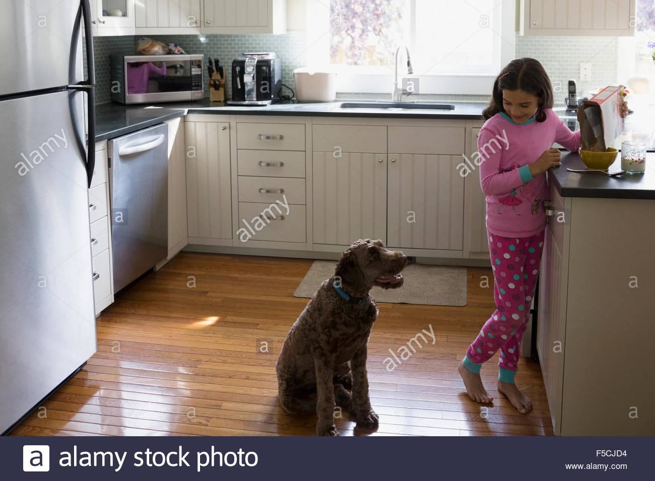 Hund beobachten Mädchen Gießen Getreide in Küche Stockbild