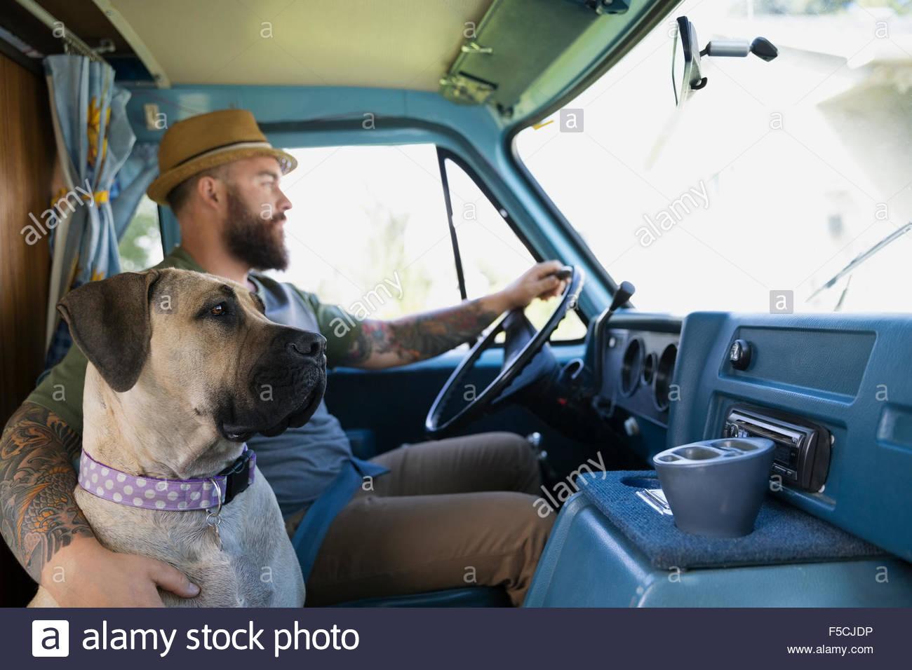 Hund, Reiten mit Mann in van Stockbild