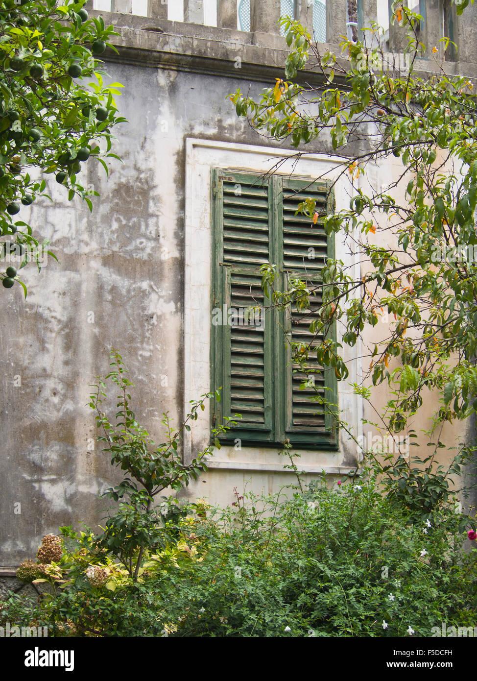Details Eines Alten Beton Villa Und Garten Vegetation Im Bereich