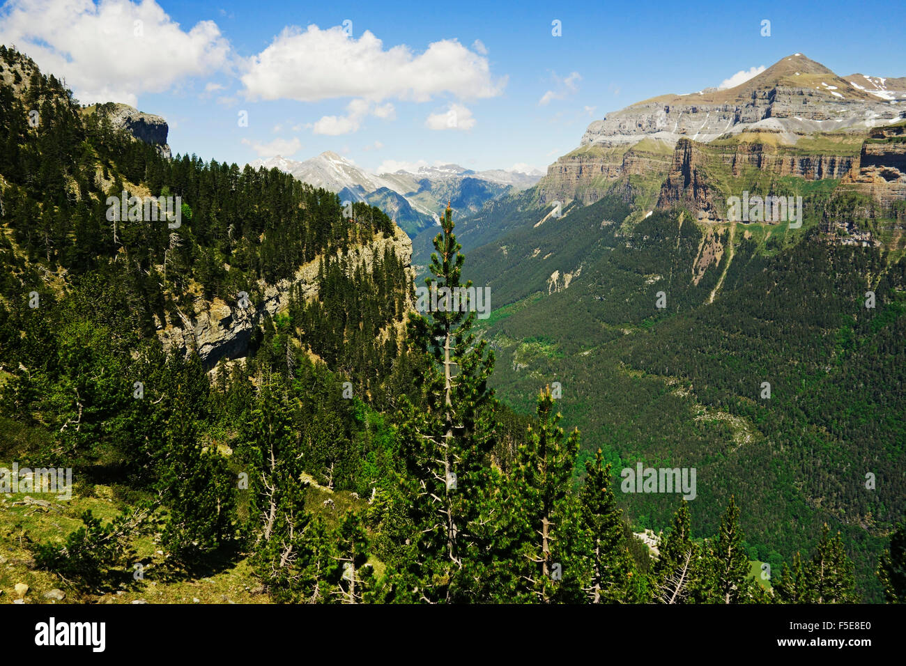 Valle de Ordesa, Parque Nacional de Ordesa, zentralen Pyrenäen, Aragon, Spanien, Europa Stockbild