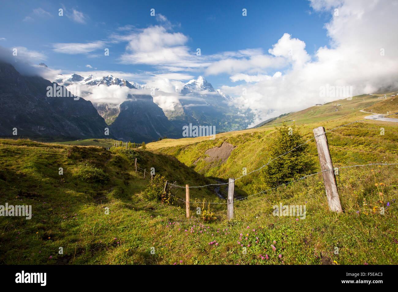 Blick auf Mount Eiger von First, Grindelwald, Berner Oberland, Kanton Bern, Schweizer Alpen, Schweiz, Europa Stockbild