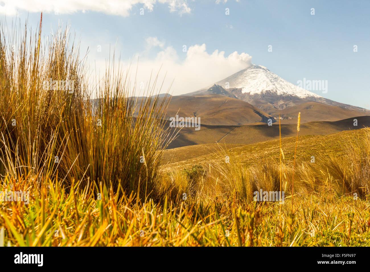 Vulkan Cotopaxi In Ecuador Stockbild