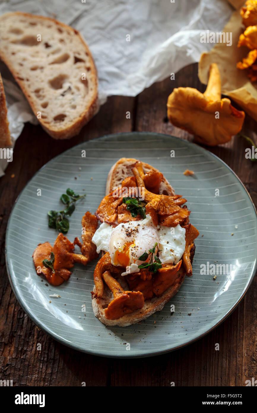 Wilde Girolle Pilzen und pochiertem Ei auf toast Stockbild