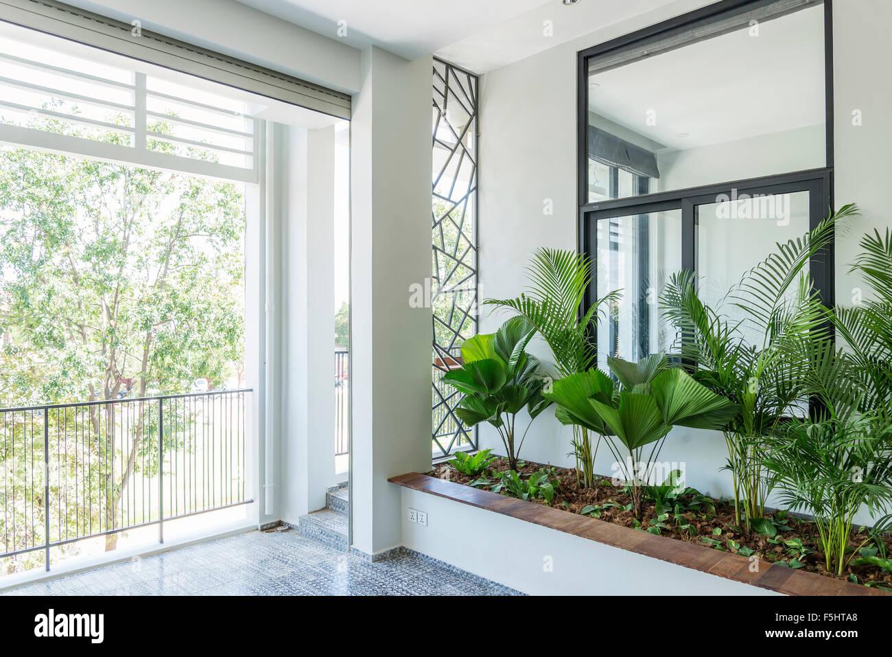 moderne zeitgenössische Innenarchitektur Garten Balkonpflanzen Stockbild