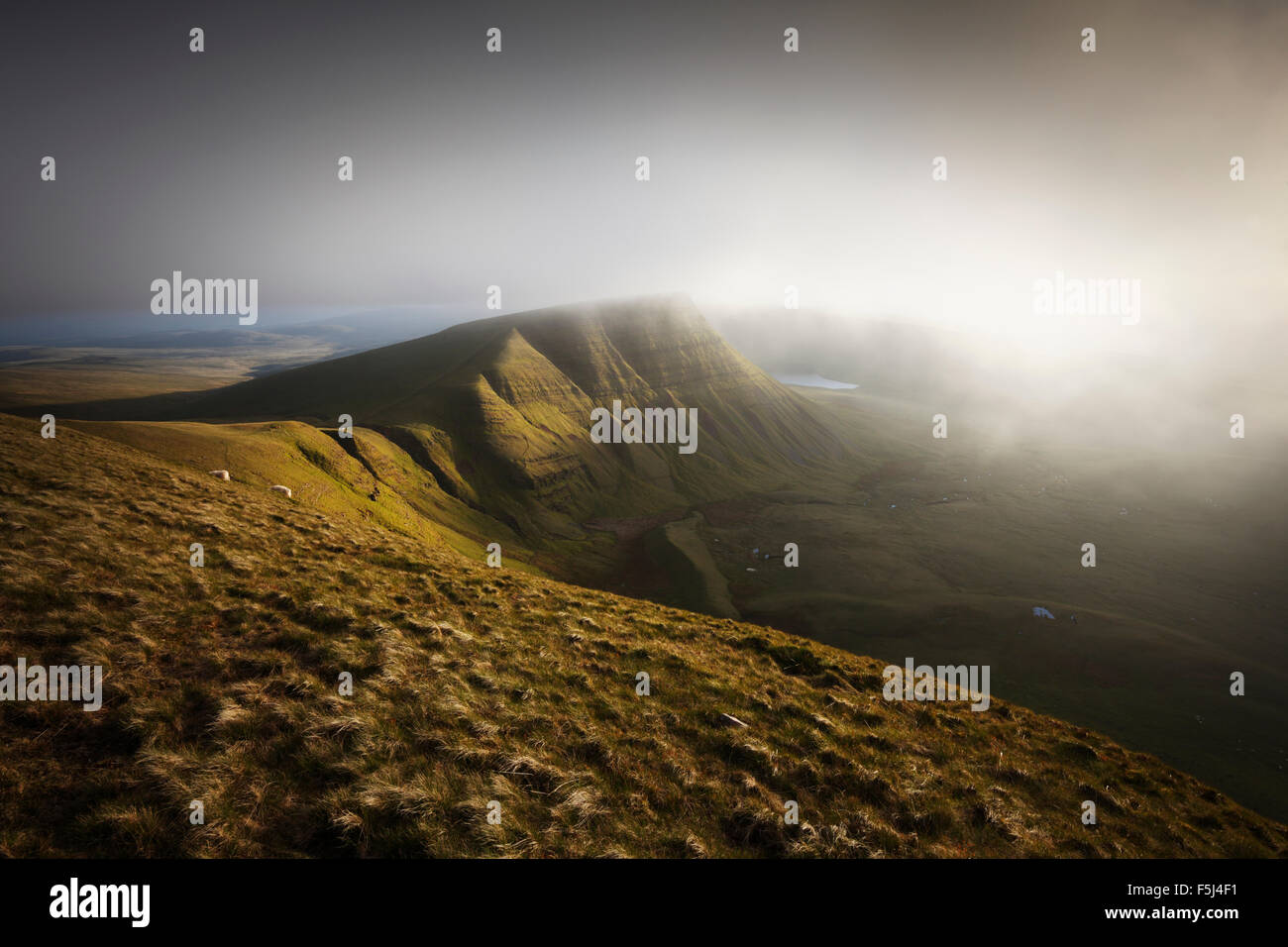 Nebel Picws Xiaodan The Black Mountain in überrollen. Brecon Beacons National Park. Carmarthenshire. Wales. Stockbild