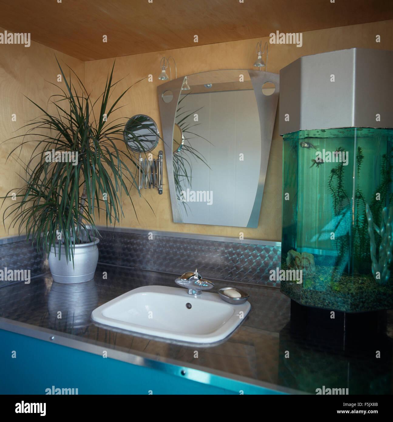 Kleines Aquarium und Zimmerpflanze neben Waschbecken im ...