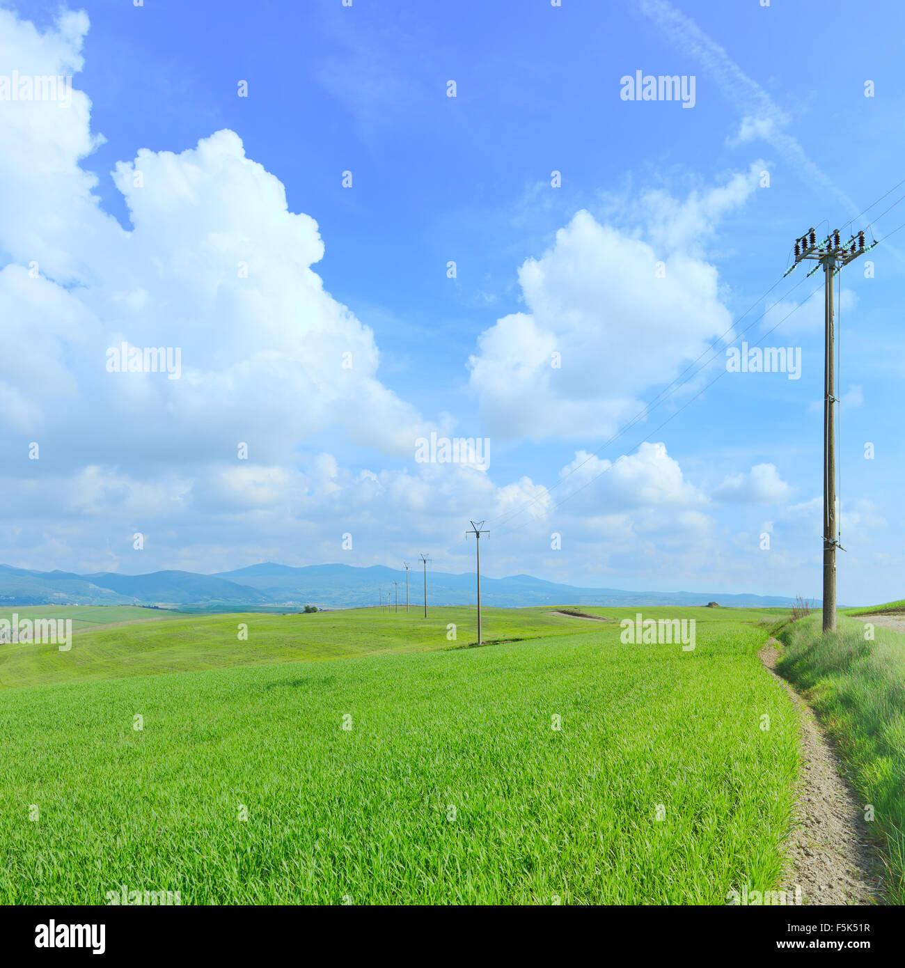 Elektrische Linie Strommasten in der grünen Wiese und einem bewölkten hellblauen Himmel im Frühling. Stockbild