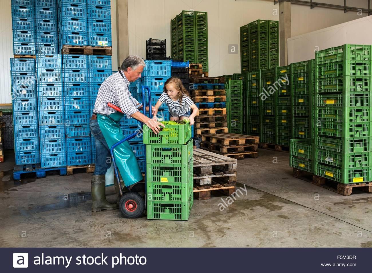 Großvater und Enkelin Kisten stapeln Stockbild