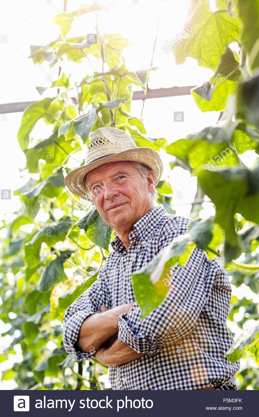 Senior Mann mit Hut, umgeben von Pflanzen Arme gefaltet, Blick auf die Kamera zu Lächeln Stockbild