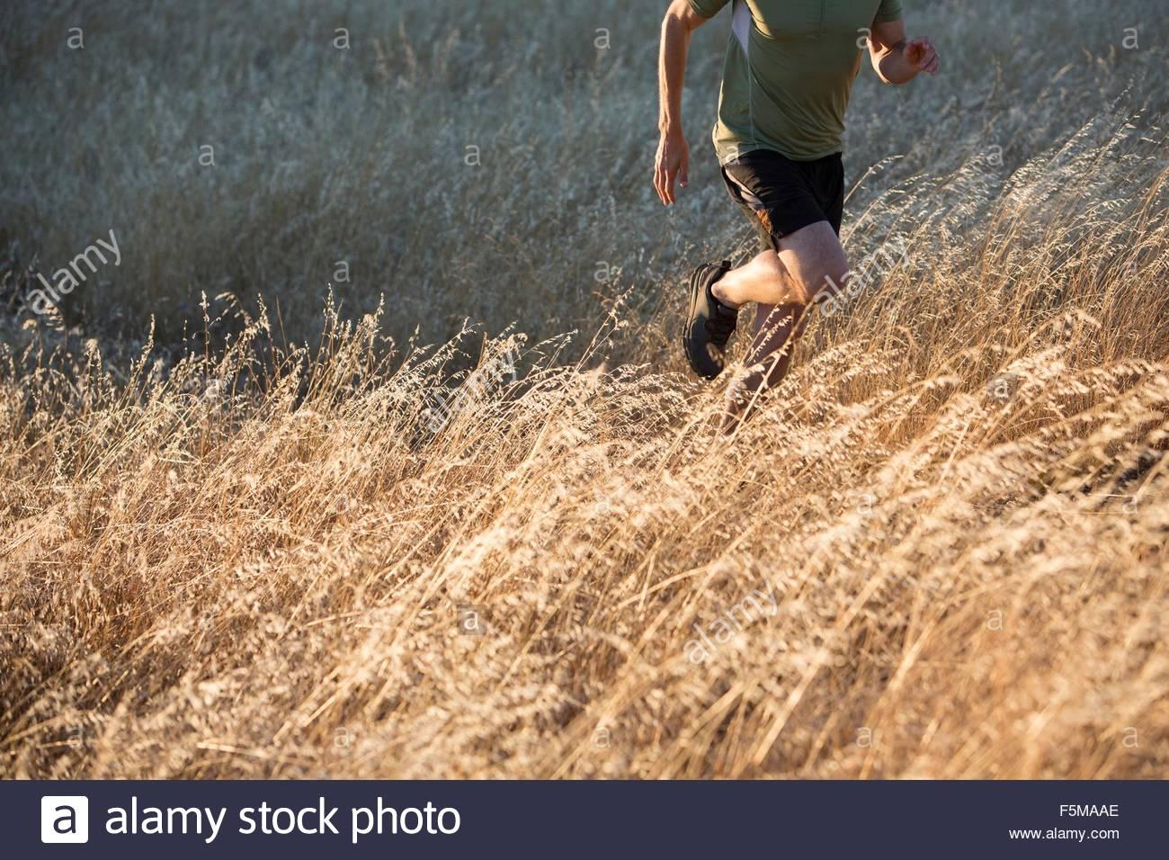 Mann läuft auf lange Wiese Stockbild