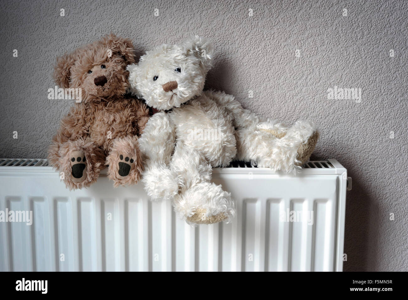 teddy b ren sitzen auf inl ndische heizk rper wieder h user zentralheizung warm isolierung. Black Bedroom Furniture Sets. Home Design Ideas