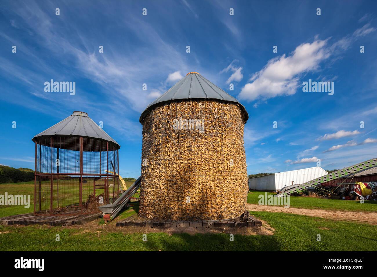 Traditionellen offenen Behlen Metalldraht Netz Mais Krippen im Frühherbst auf einem Bauernhof in der Nähe Stockbild
