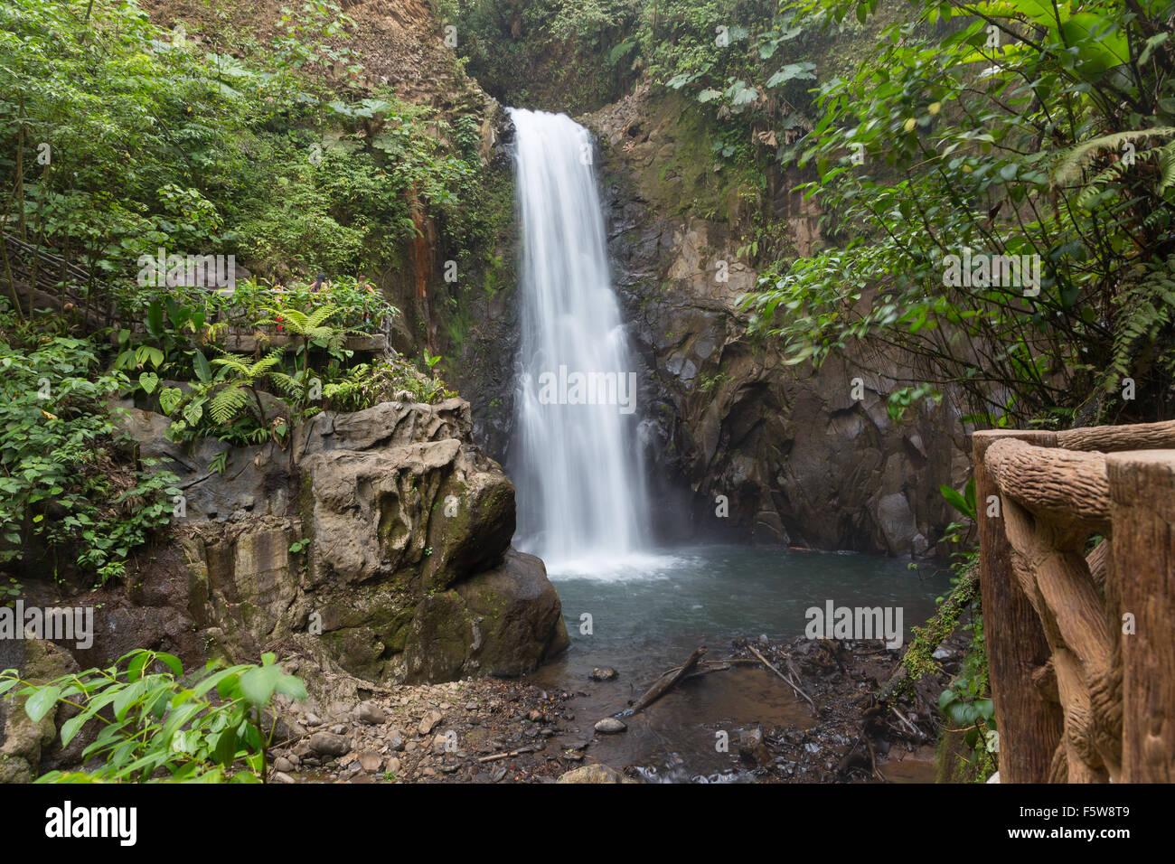 Fernblick über verschwommenes La Paz Wasserfall unter dem Regenwald, Costa Rica Stockbild