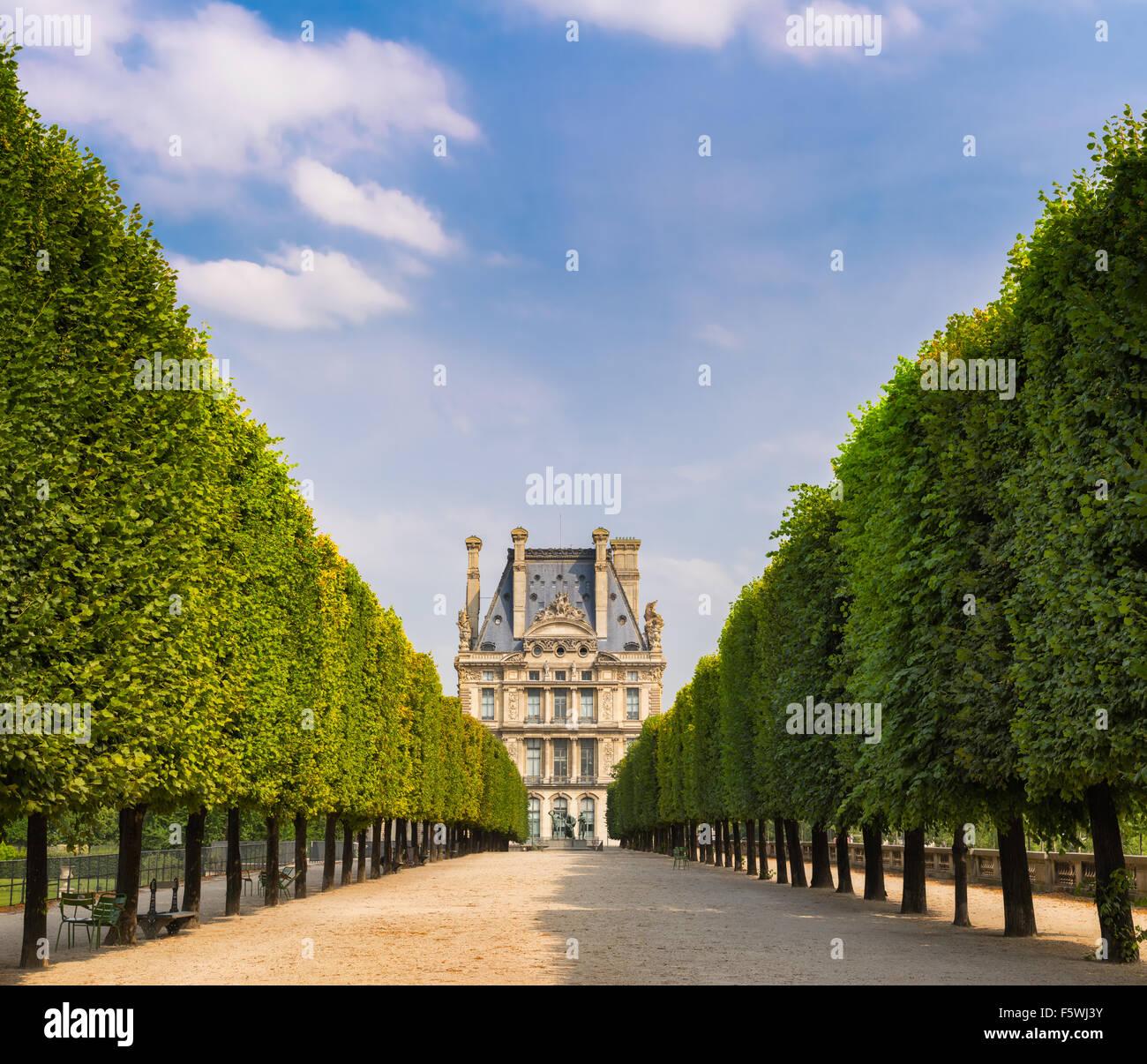 Tuilleries Garten Bäumen gesäumten Vista führt zu Louvre Museum. Sommer-Blick von der Terrasse du Bord de l ' Eau Stockfoto