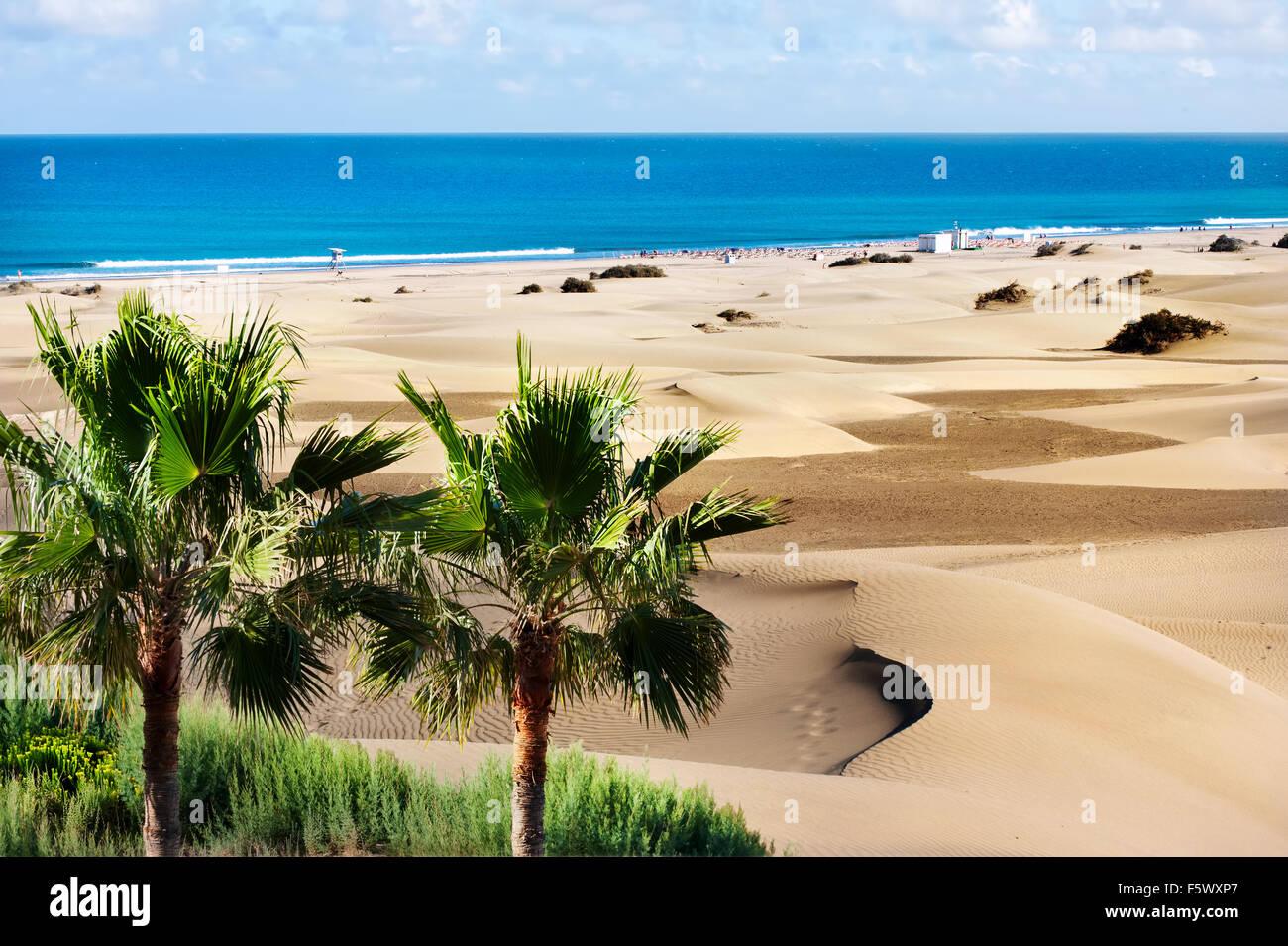 Dünen von Maspalomas. Gran Canaria. Kanarischen Inseln. Stockbild
