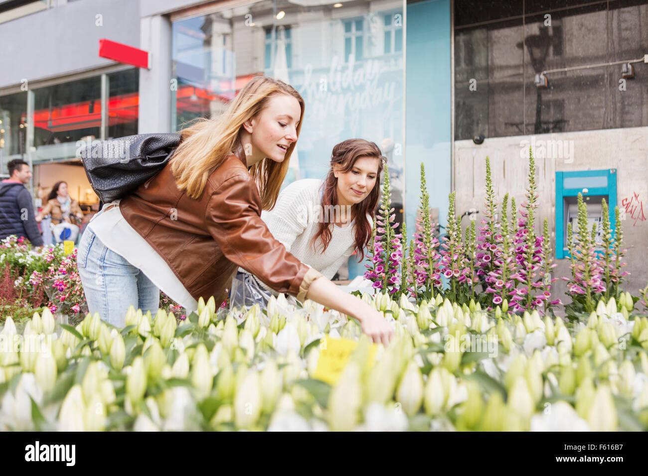Freundinnen Blumen am Markt einkaufen Stockbild