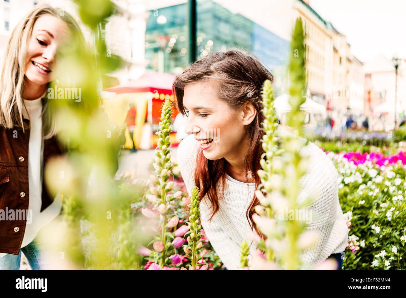 Lächelnden Freundinnen Blick auf Pflanzen im Markt Stockbild