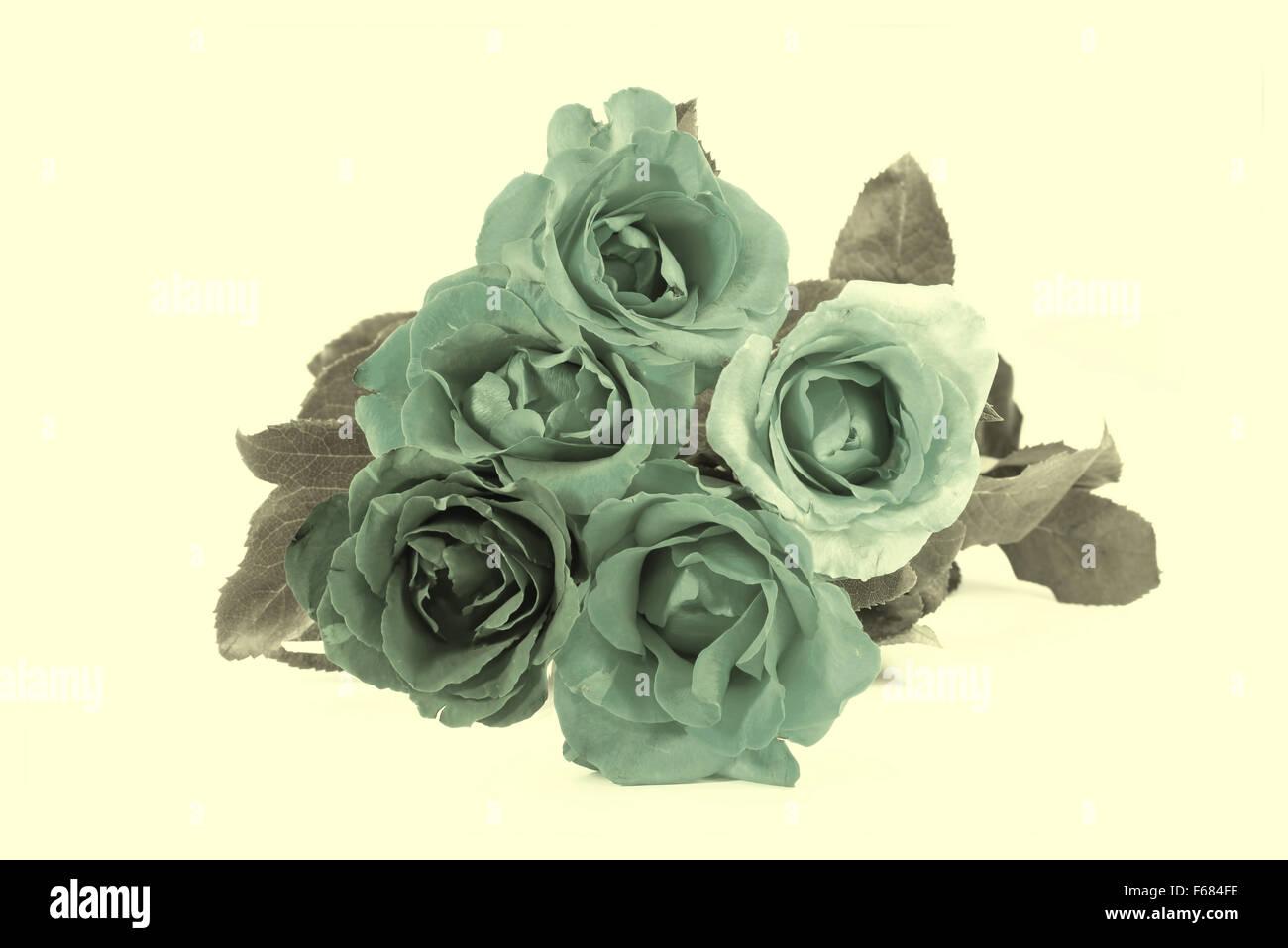 Rosen, Valentinstag-Vintage-Stil Stockbild