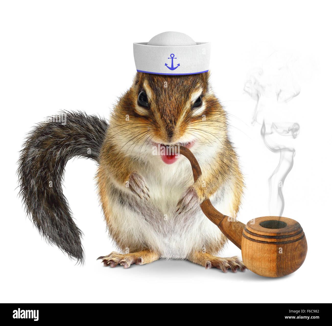 Funny Animal Sailor Stockfotos & Funny Animal Sailor Bilder - Alamy