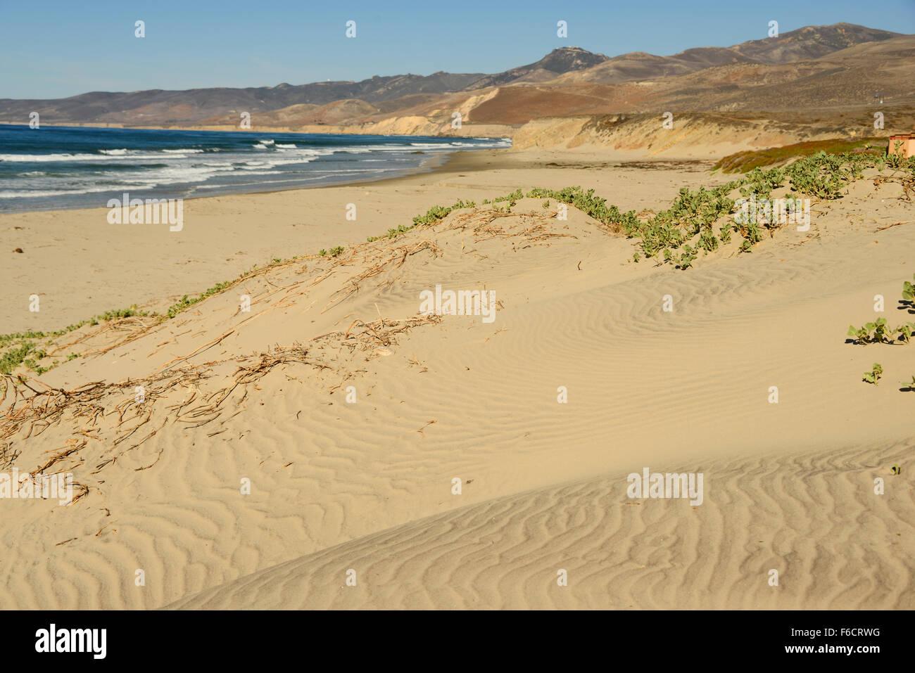 Beach Sand Dunes California Stockfotos und  bilder Kaufen   Alamy