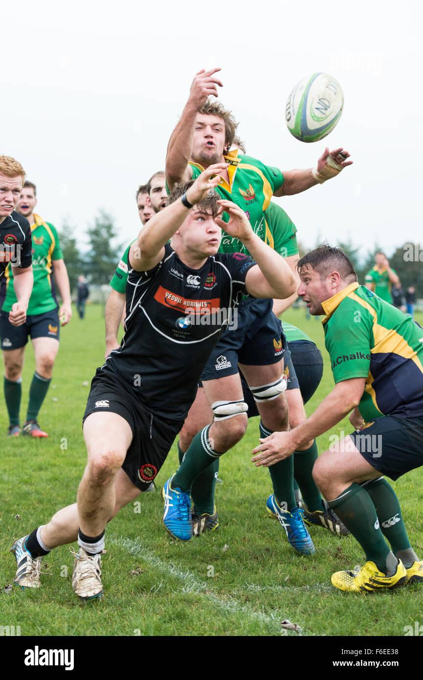 Rugby-Spieler eine Herausforderung für Ball kurz Line-out Stockbild
