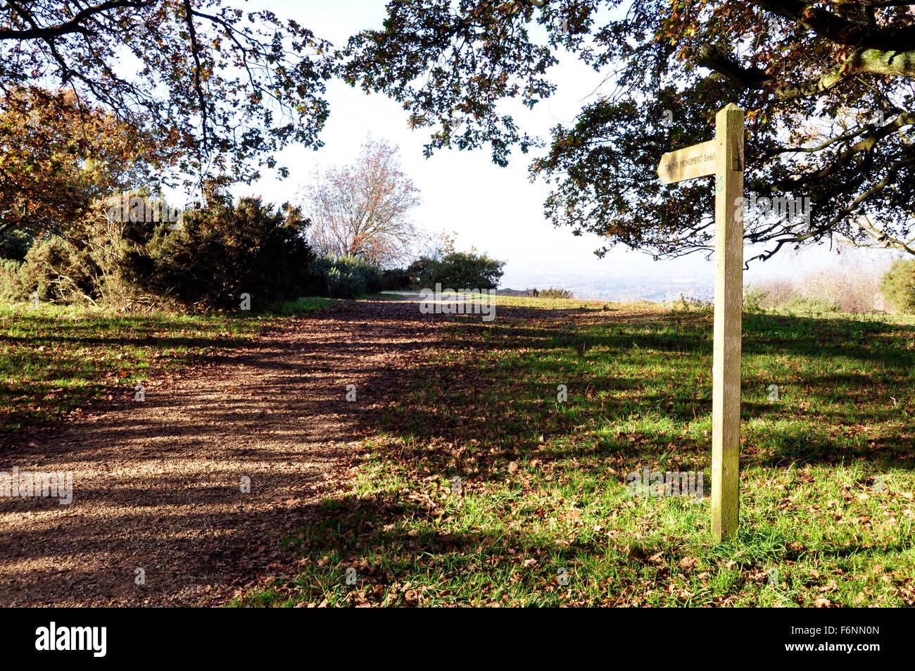 Chiltern Hills - auf Beacon Hill - Wanderweg - Finger Post - Anzeigen über Aylesbury Plain - Sonnenlicht und Stockbild