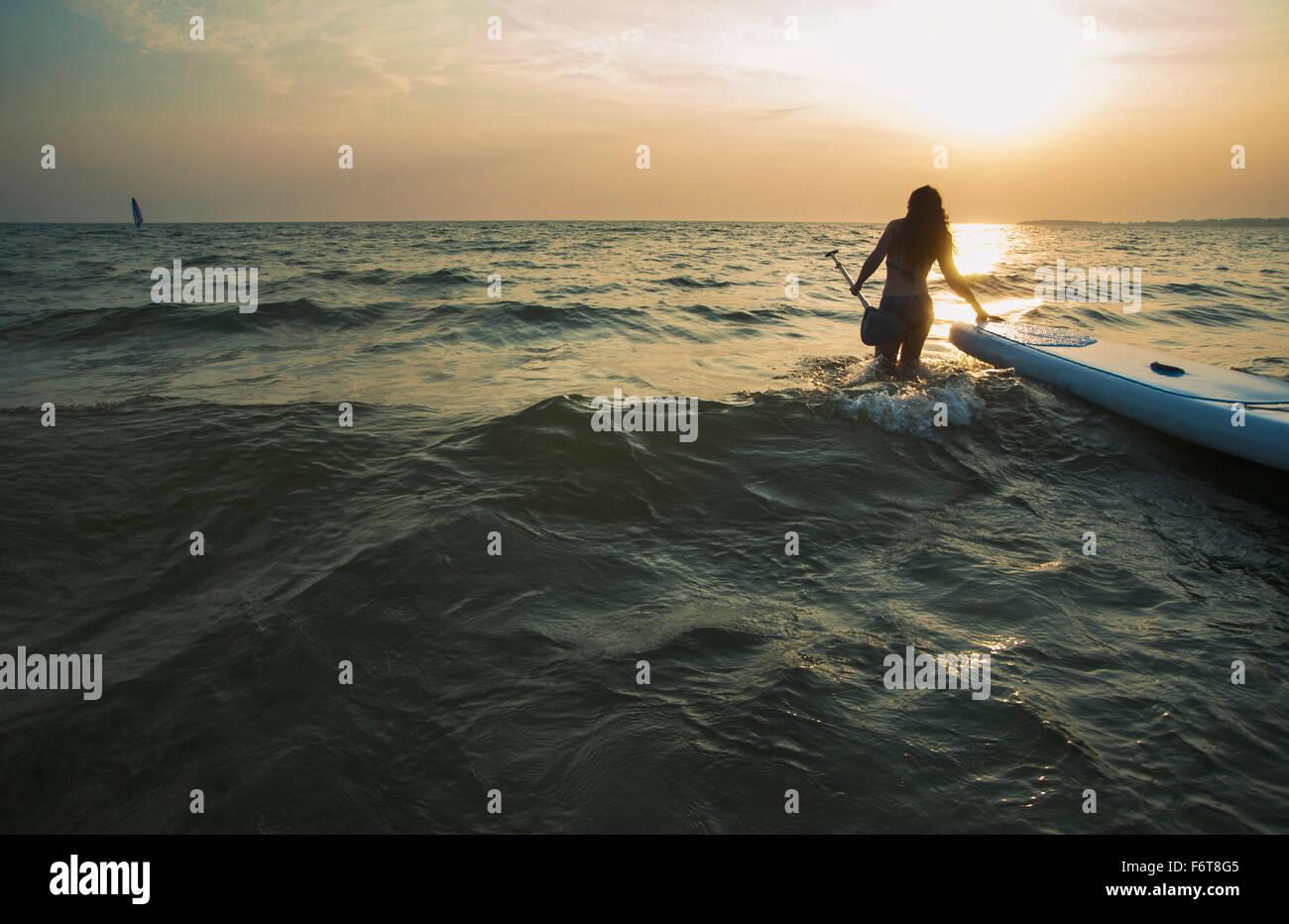 Frau zieht Paddleboard in See Stockbild