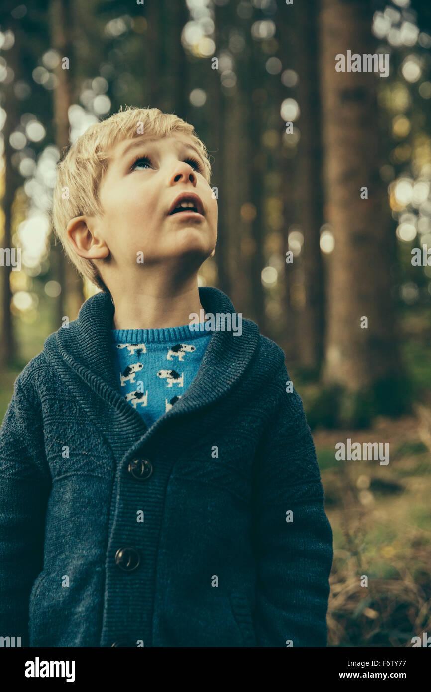 Kleiner Junge im Wald blickte verwundert stehen Stockbild