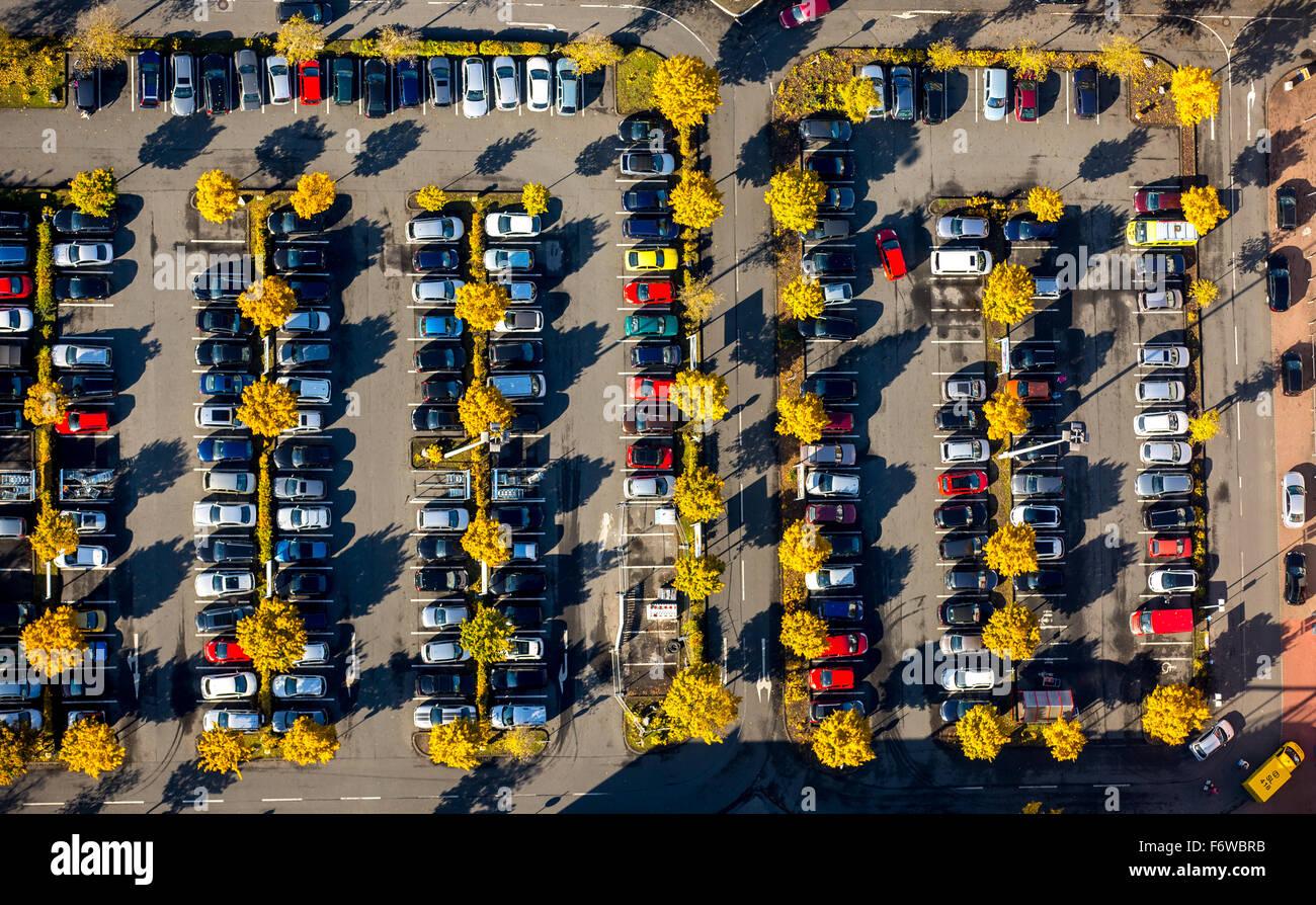 Parkplatz Möbel Shop Roller Mit Laubbäume Im Herbst Laub Essen