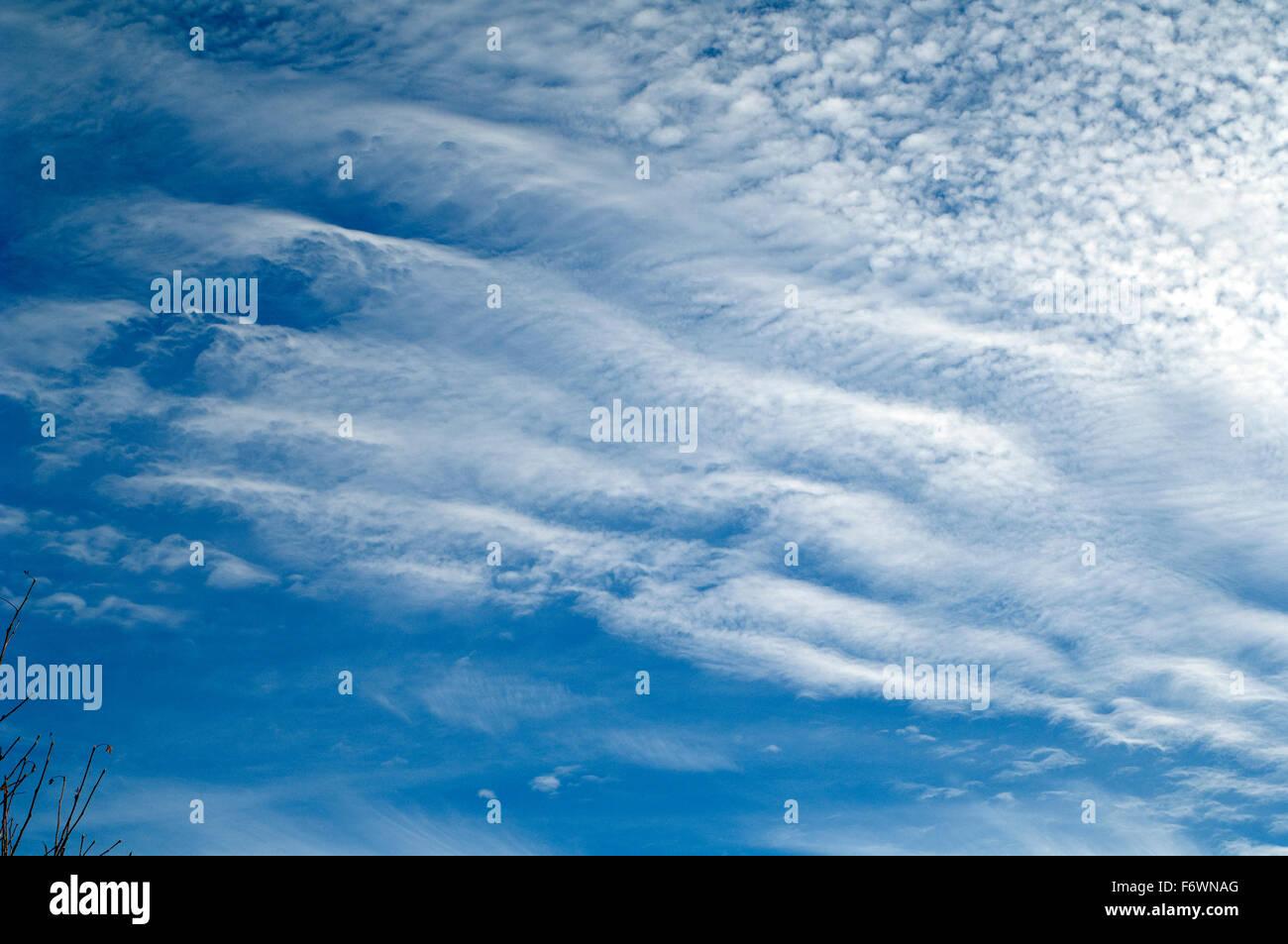Schaefchenwolken, Cirrocumulus, undulatus Stockbild