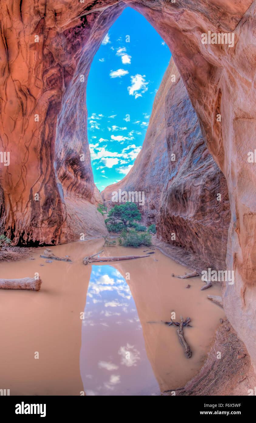 Reflexionen im schlammigen Wasser, Navajo Arch Arches National Park, Utah Devils Garden Stockbild