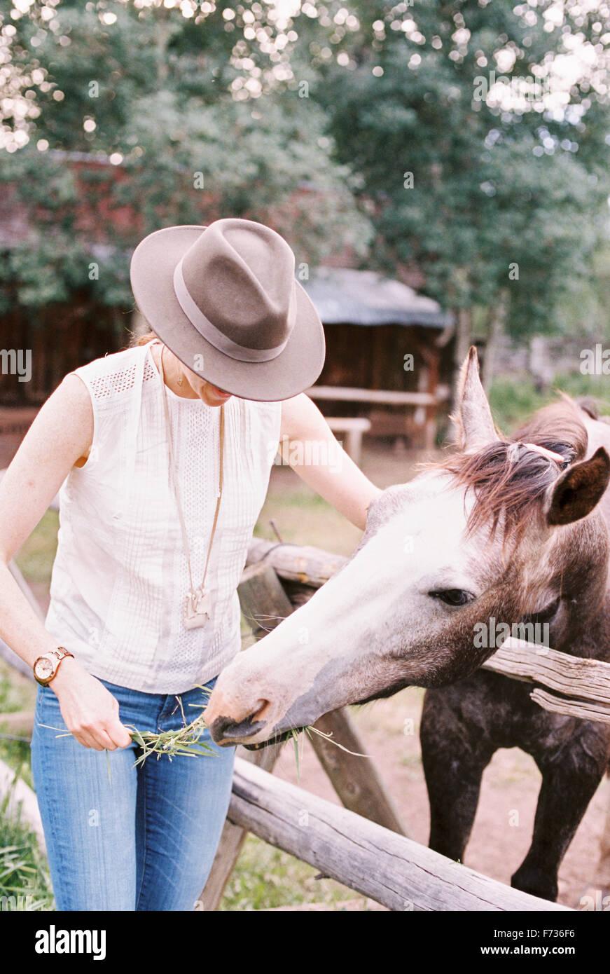 Frau, Fütterung ein Pferd auf einer Koppel. Stockbild