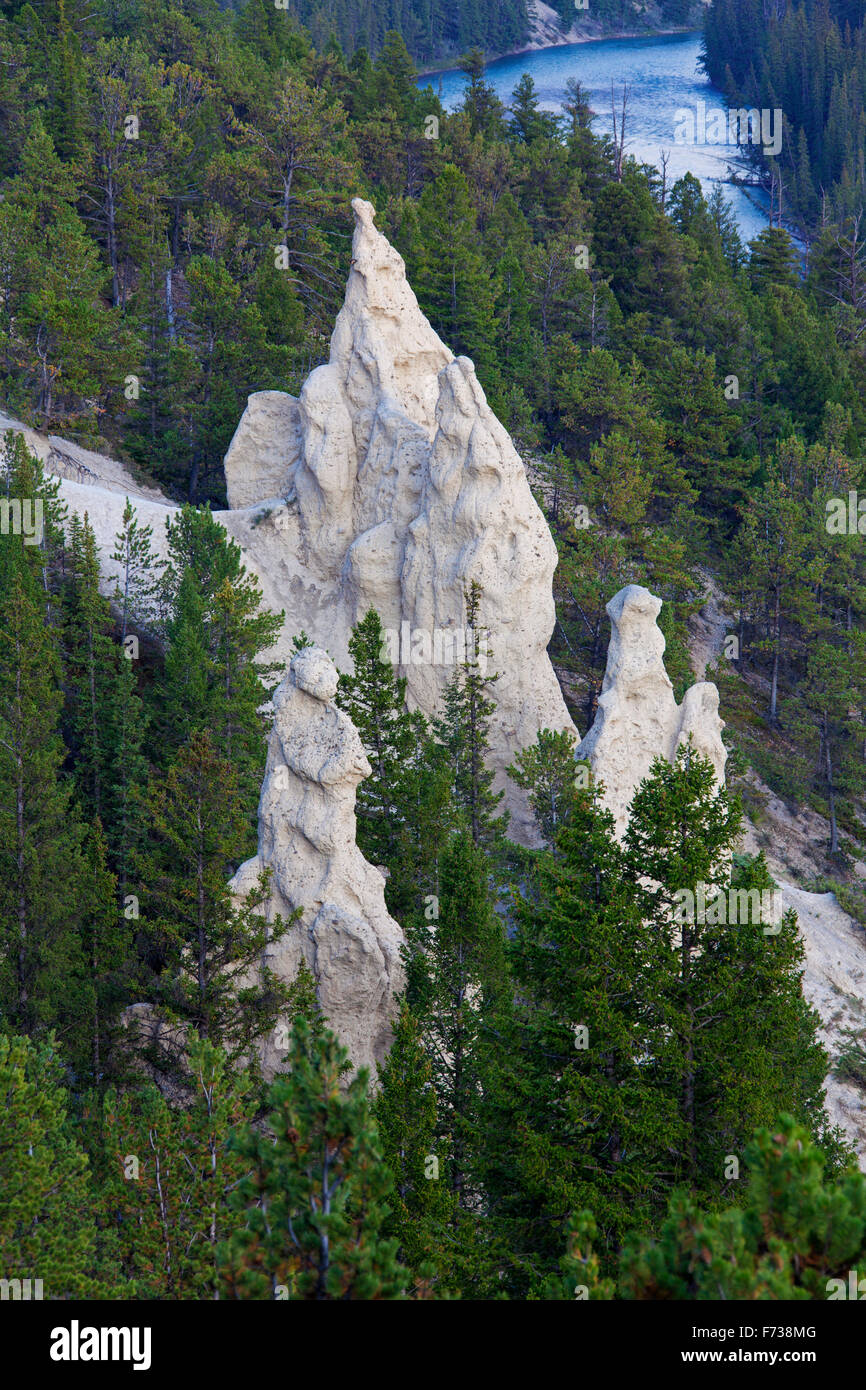 Pyramiden der Erde / Hoodoos im Bow Valley, Banff Nationalpark, Alberta, Rocky Mountains, Kanada Stockbild