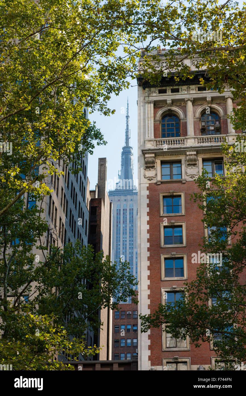 Sommer in Midtown Manhattan, New York City mit Blick auf die Wolkenkratzer von London Bäumen umrahmt. Stockbild