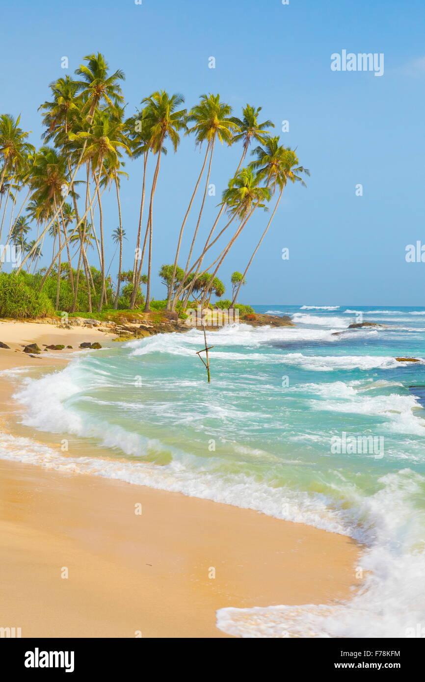 Sri Lanka - Küste in Koggala Palmen Strand, Asien Stockbild