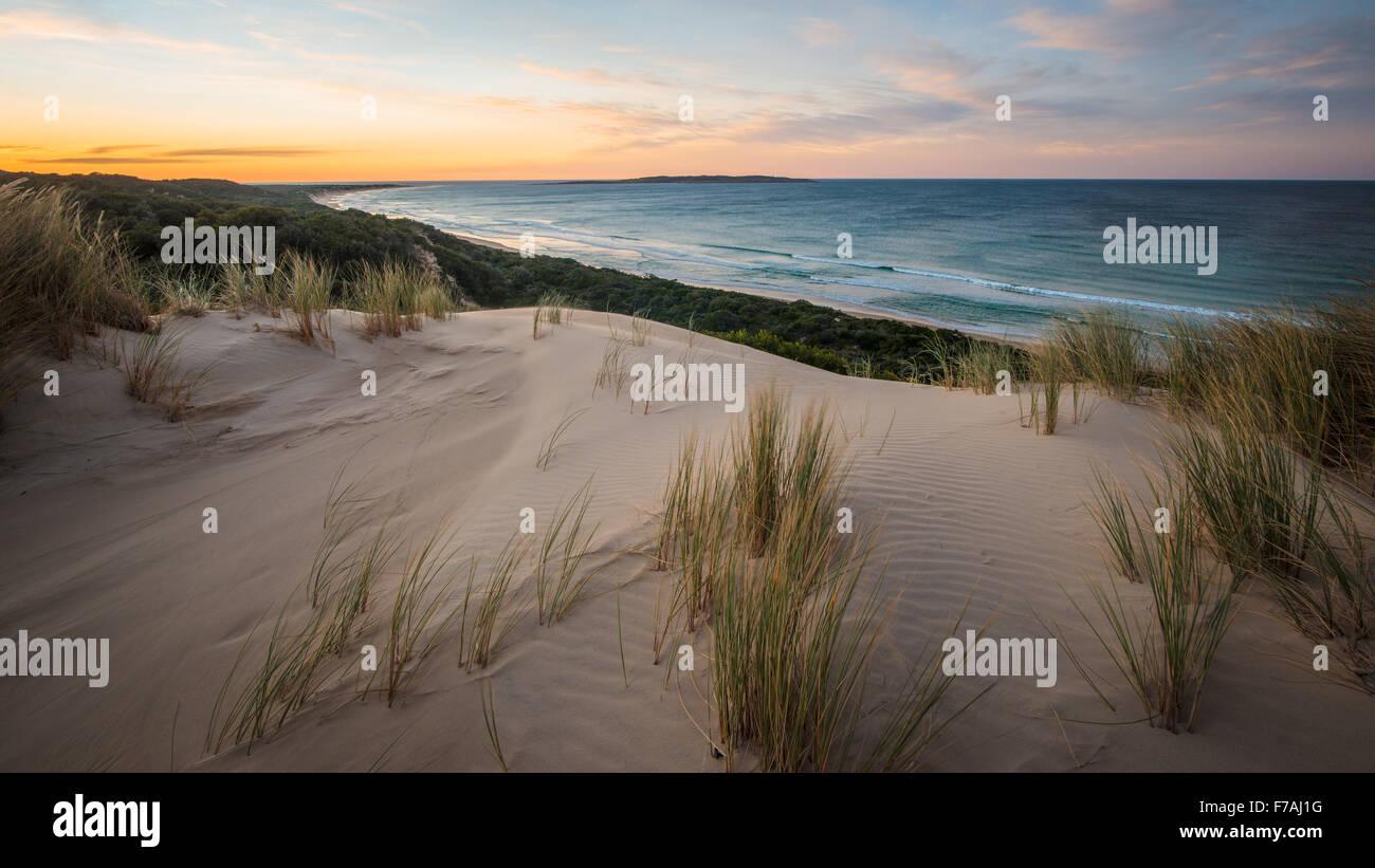 Spektakuläre Sanddünen entlang der Nadgee Wildnis Fuß, New South Wales Victoria Grenze. Stockbild