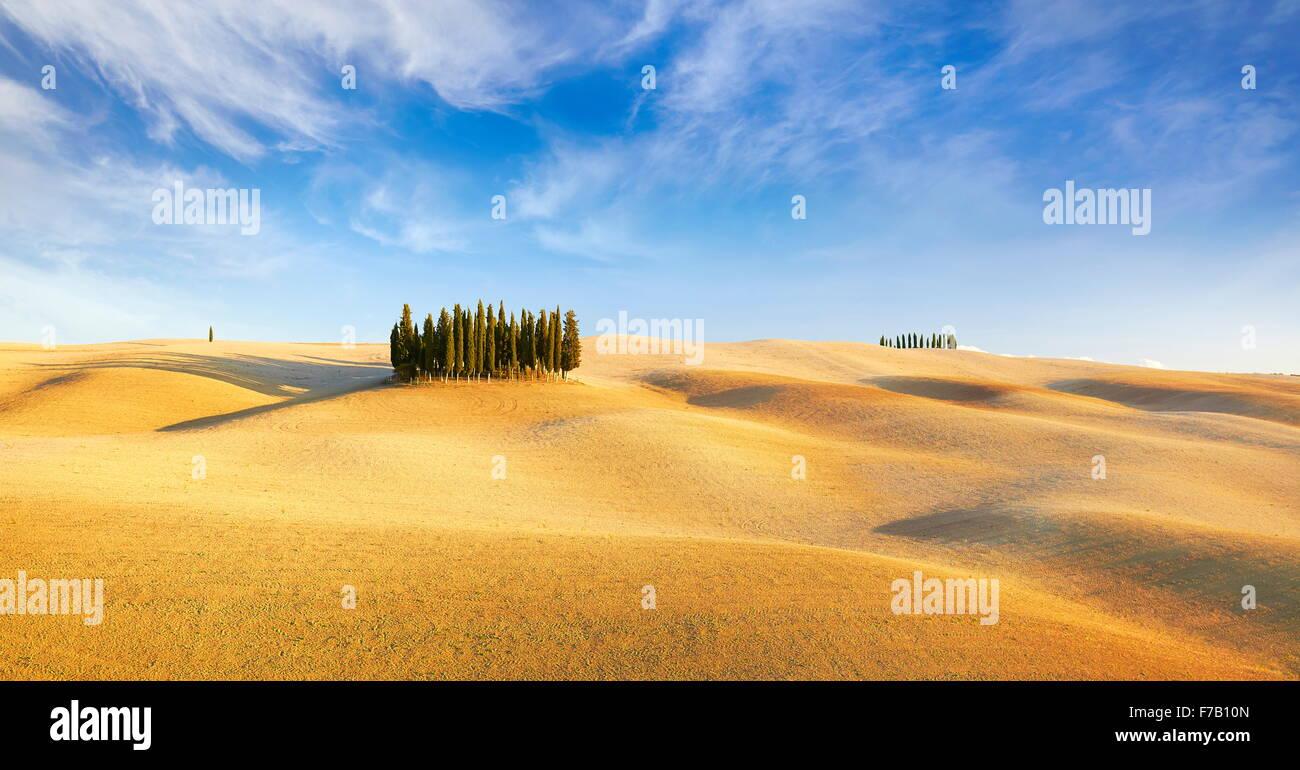 Val d ' Orcia, Zypresse Bäume, Toskana, Italien Stockbild