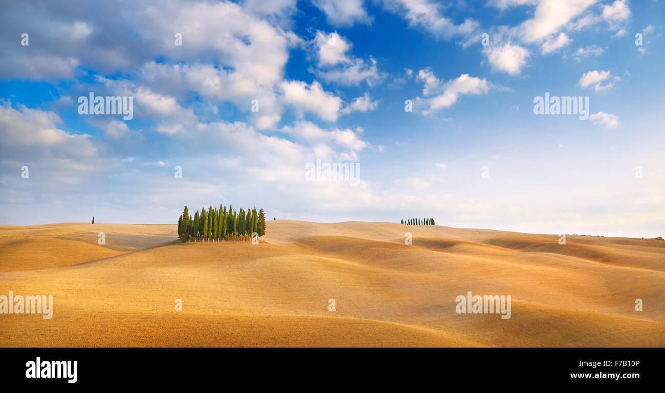 Zypresse Bäume Landschaft, Val d ' Orcia, Toskana, Italien Stockbild