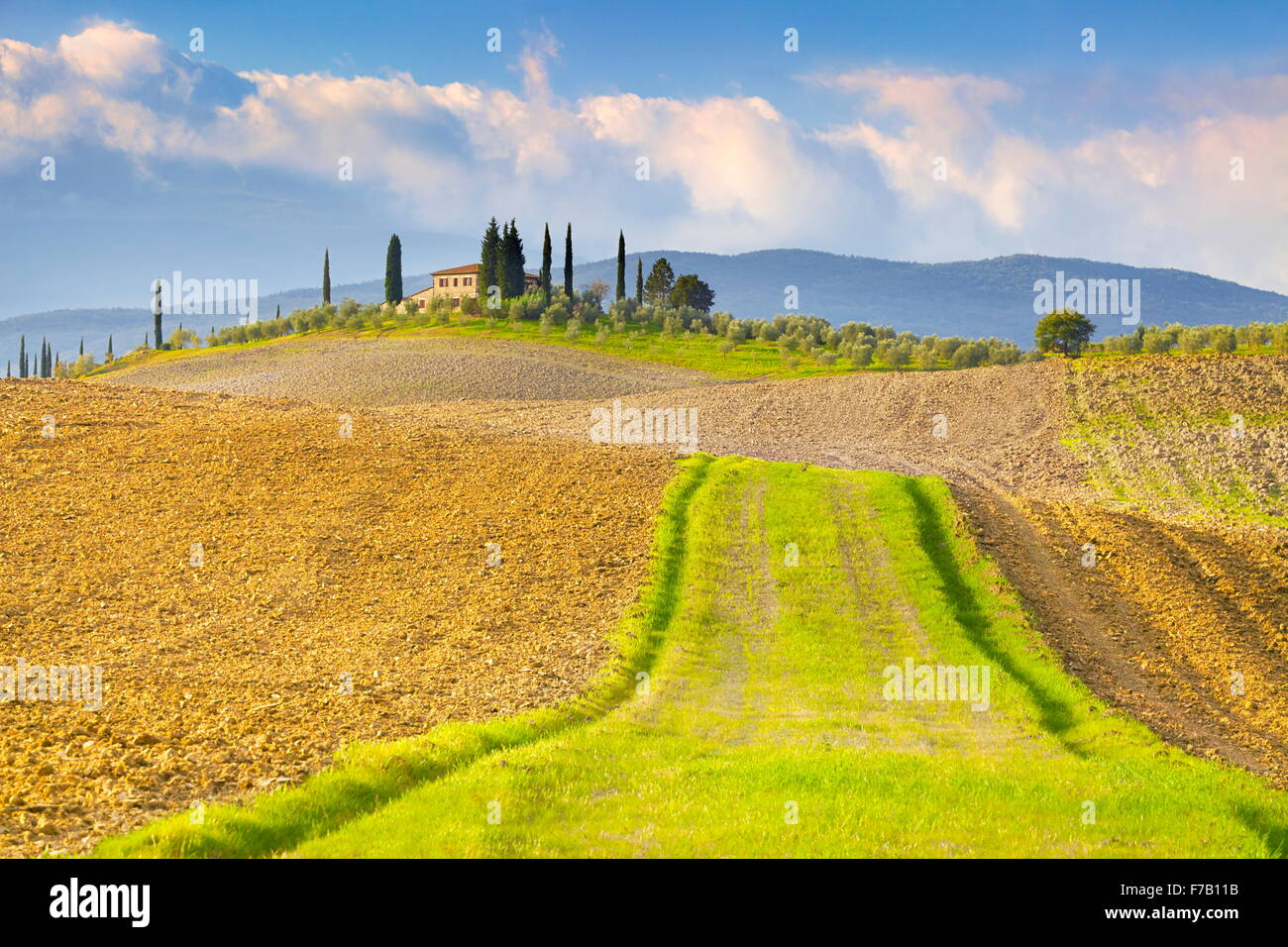 Toskana Landschaft, Val d ' Orcia, Italien Stockbild