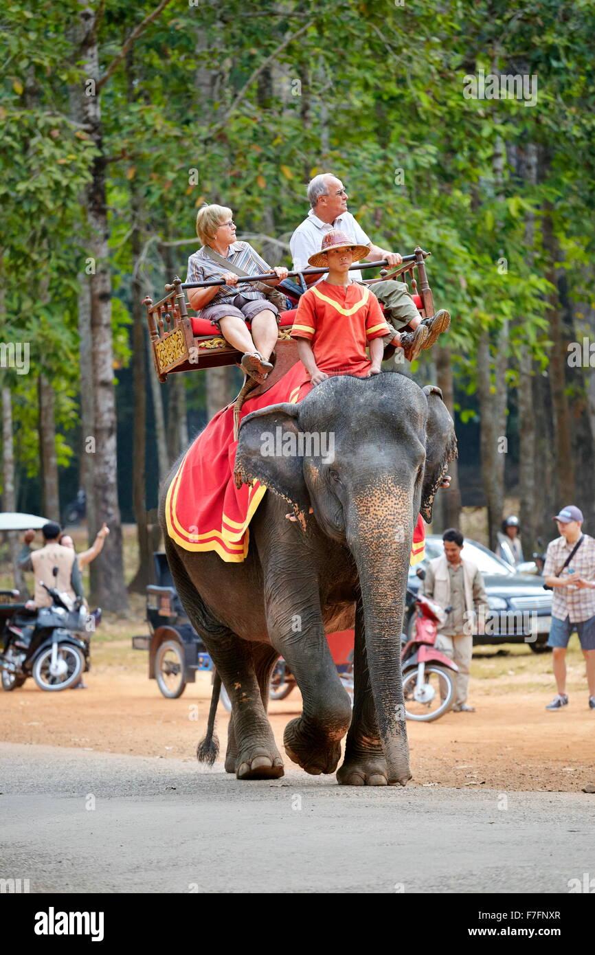 Touristen auf Elefanten reiten, Bayon Tempel, Angkor Thom, Kambodscha, Asien Stockbild