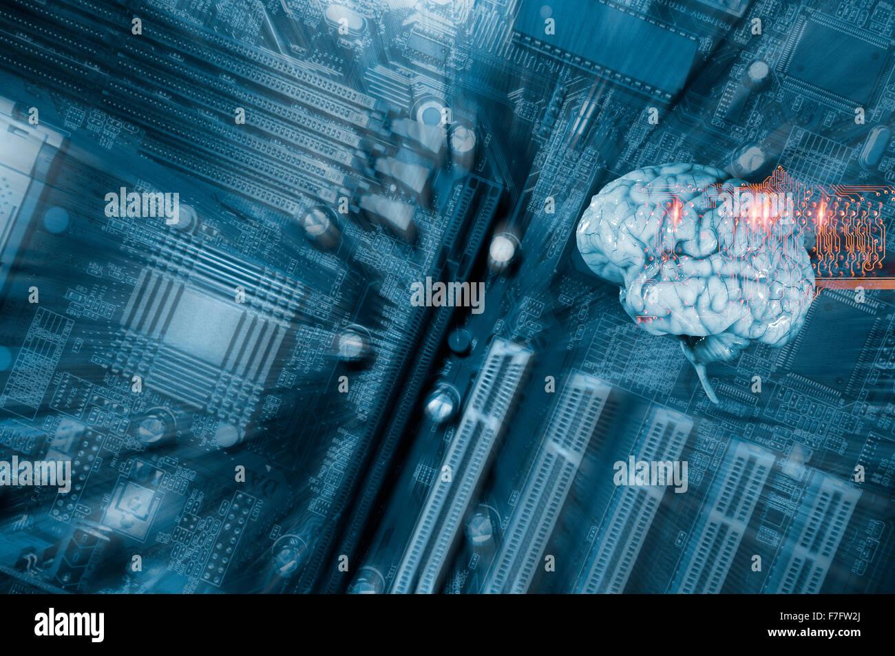 Menschliche Gehirn und Kommunikation Stockbild