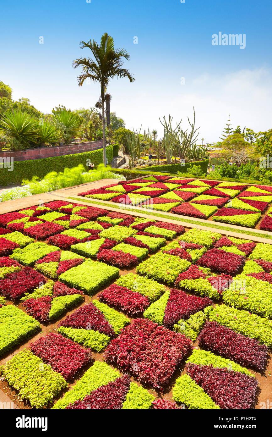 Botanischer Garten - Funchal, Madeira Insel, Portugal Stockbild