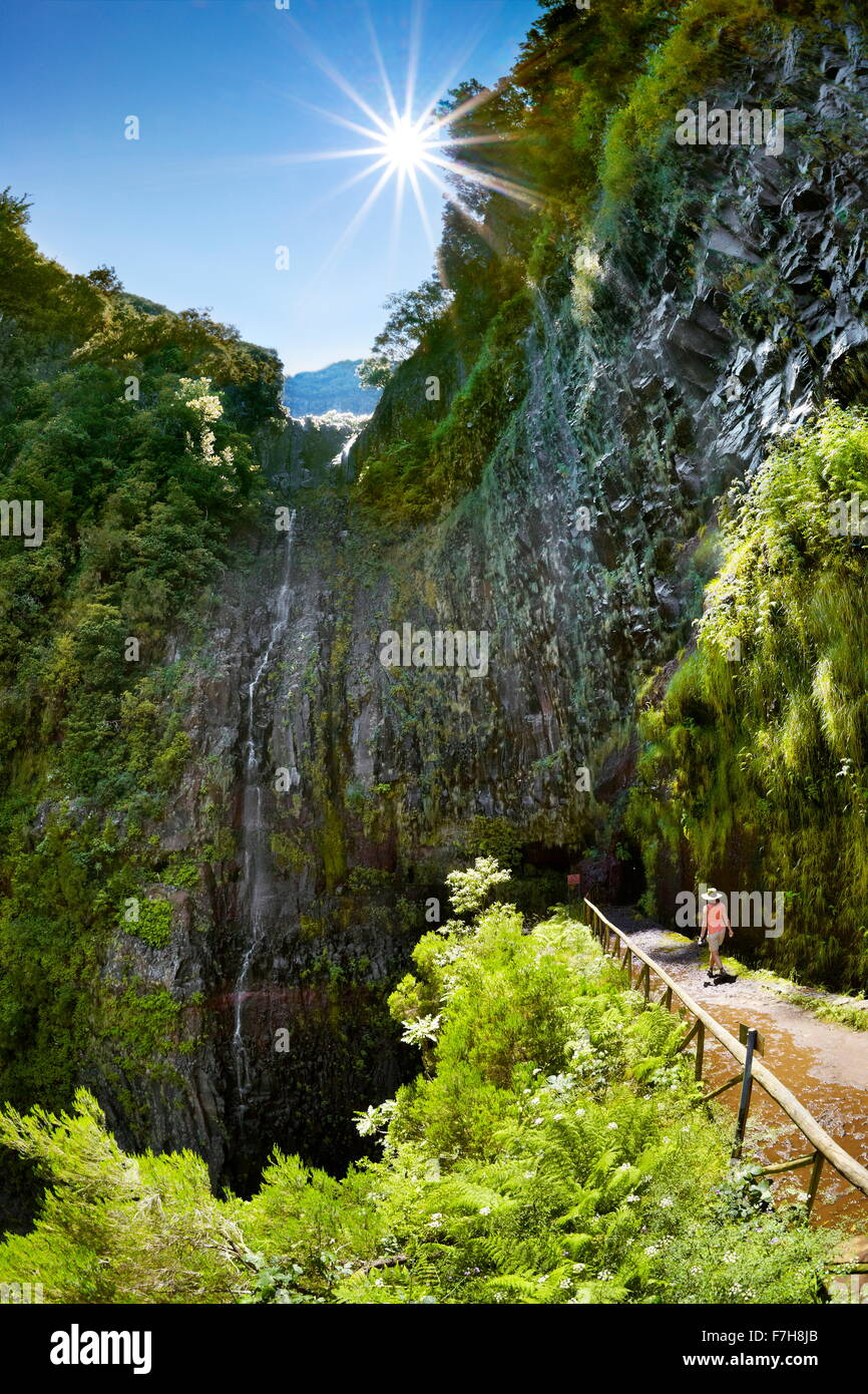Madeira - Levada Do Risco, Weg zum Wasserfall Risco, Insel Madeira, Portugal Stockbild