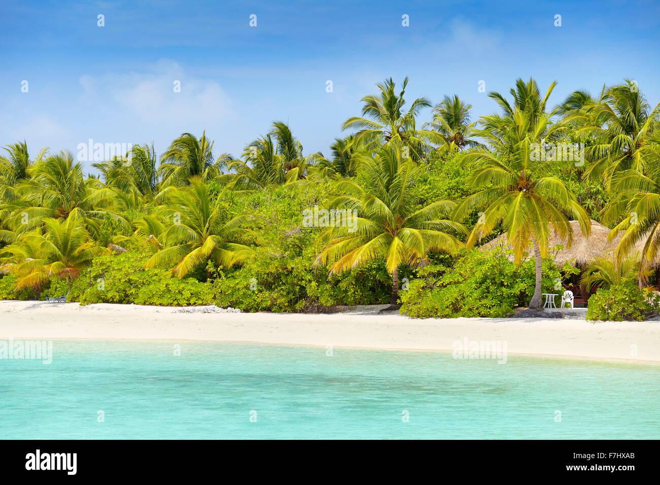 Malediven Insel, Ari Atoll Stockbild