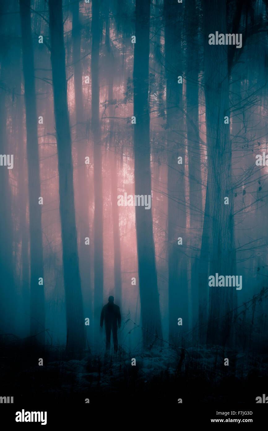 Geheimnisvolle Gestalt im nebligen und unheimlichen Wald Stockbild