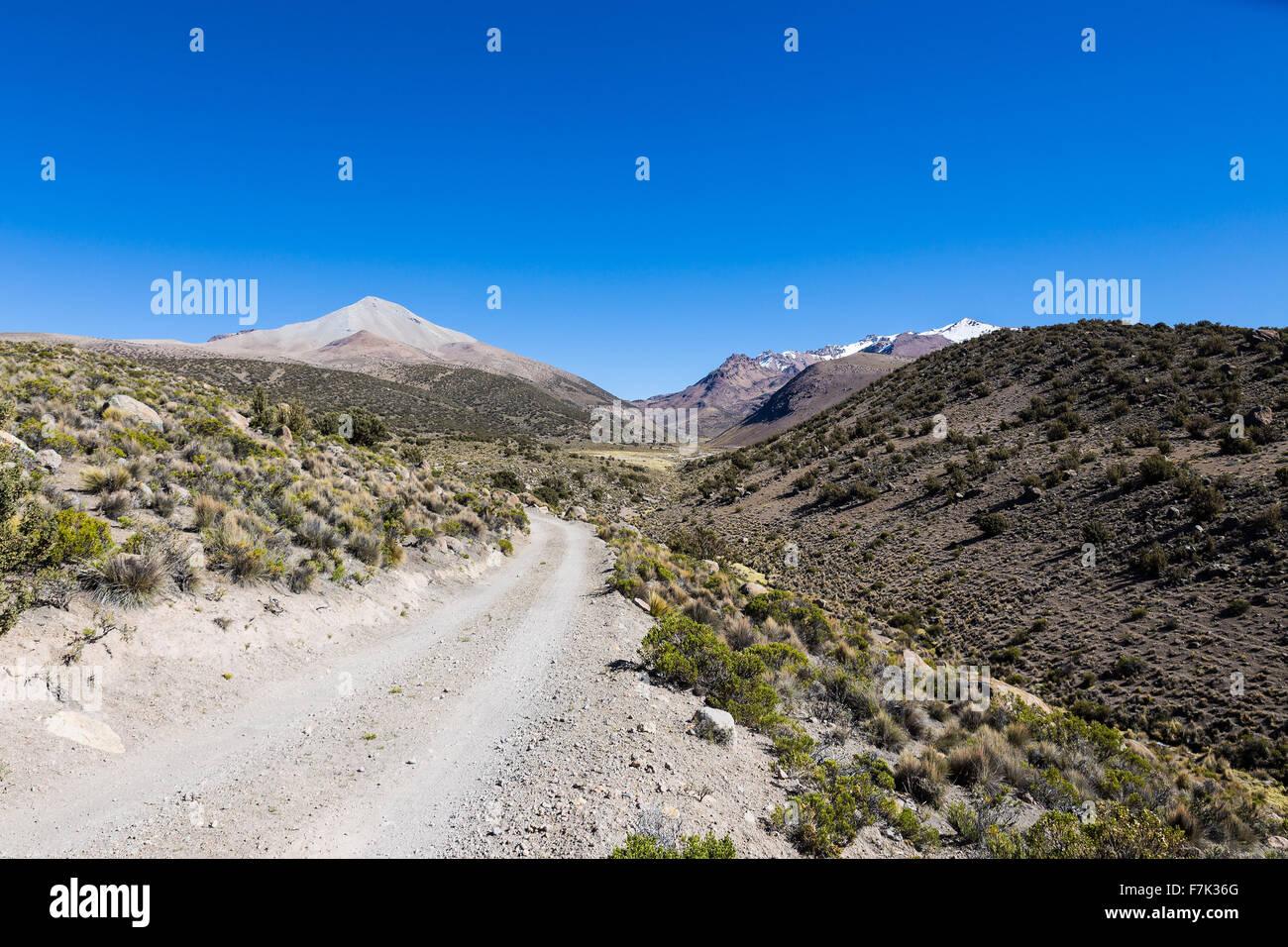Schmalen Pfad in den Anden. Das Wetter Anden Hochland Puna Grünland Ökoregion, die montane Wiesen und Stockbild