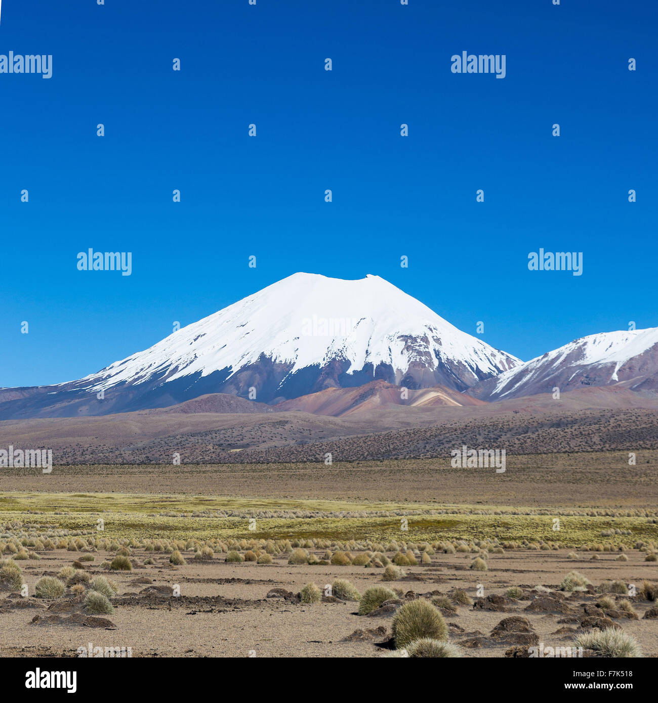 Vulkan Parinacota. Hohen Anden-Landschaft in den Anden. Hohen Anden-Tundra-Landschaft in den Bergen der Anden. Das Stockbild