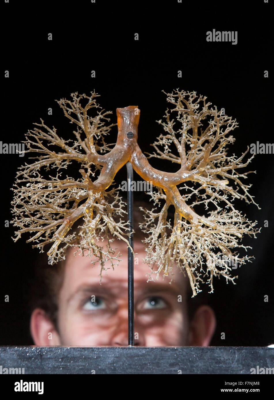 Edinburgh, UK. 2. Dezember. Anatomie-Ausstellung beleuchtet ...