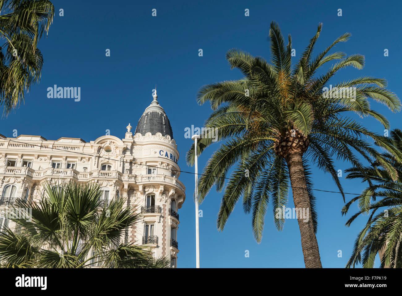 Carlton Hotel, Fassade, Palme, Cannes, Stockbild